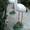 Скульптуры ручной работы уток,  черепах из бетона #226623