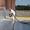 жидкая и твердая гидроизоляция #1595217