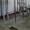 Площадка забеловки туш крупного рогатого скота #1591603