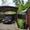 Изготовление навесов из металла и дерева,  поликорбоната и стекла каленного. В пр #1649846