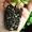 Универсальная почвосмесь,  грунт для саженцев,  цветов и других растений #1716924