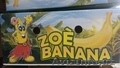 поставки бананов от производителя