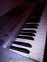 Клавиша Korg p-50